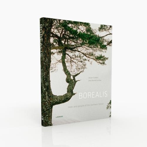 BOREALIS+TREE